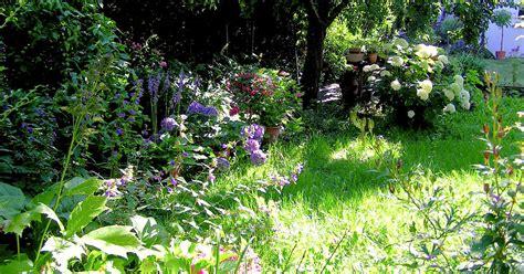 Pflanzen Für Schattigen Garten by Pflanzen F 252 R Schatten Halbschatten Und Absonnige