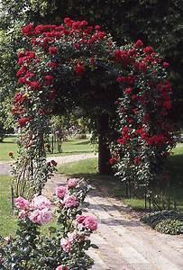 Rosen Für Rosenbogen : rosenbogen leffler gmbh ~ Orissabook.com Haus und Dekorationen