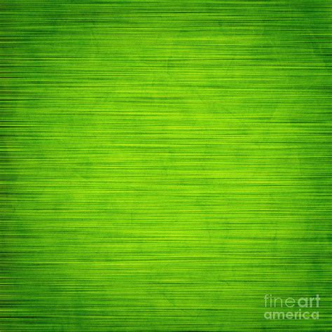 Elegant Green Abstract Background Photograph by Michal