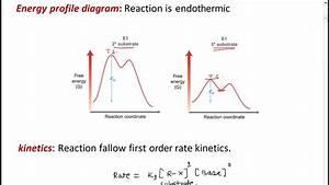 Elimination Unimolecular E1 Reaction