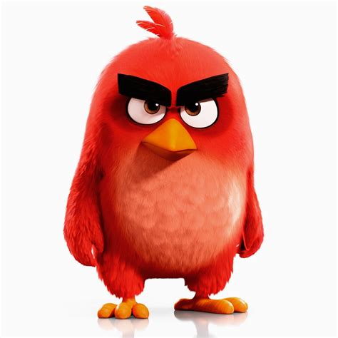Angry Bid Angry Birds The Wiki Fandom Powered By Wikia