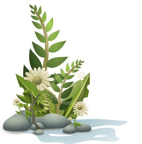plant kingdom clipart   cliparts  images