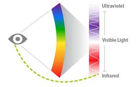 l œil humain peut voir dans l infrarouge