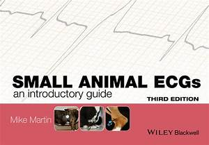 Small Animal Ecgs  An Introductory Guide  3rd Edition