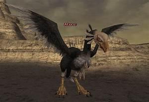 Roc - FFXIclopedia, the Final Fantasy XI wiki - Characters