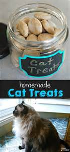 cat treats recipes cat treats recipe mess for less
