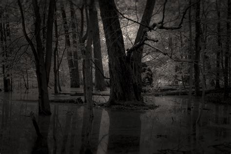 Scary Wallpaper Black And White by Forest Fordham