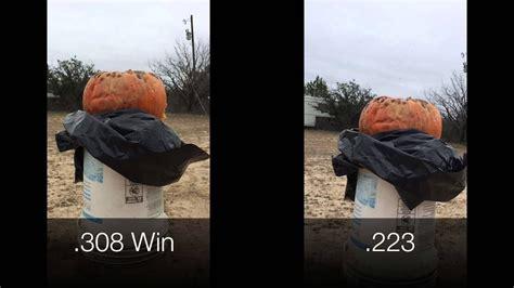 pumpkin spoiler  hits harder youtube