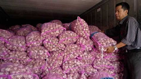kppu impor bawang putih ganggu kompetisi usaha
