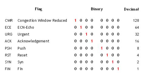 information security diary netflow records tcp flags