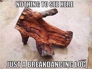 Breakdancing Log - Memes and Comics