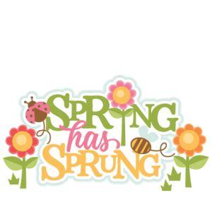 spring  sprung title modelsku