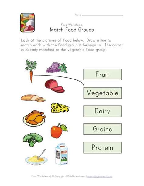match food groups worksheet science activities for the