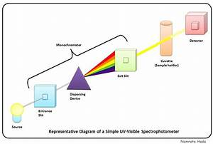 B For Biology  Spectrophotometry