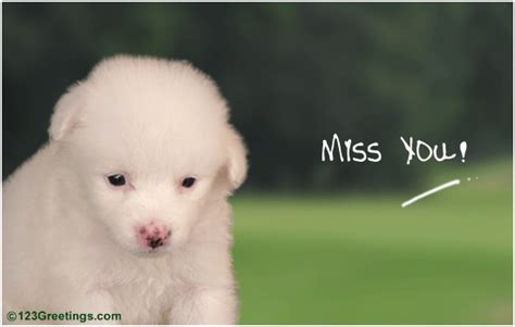 I Am Missing You My Friend! Free Miss You Ecards, Greeting