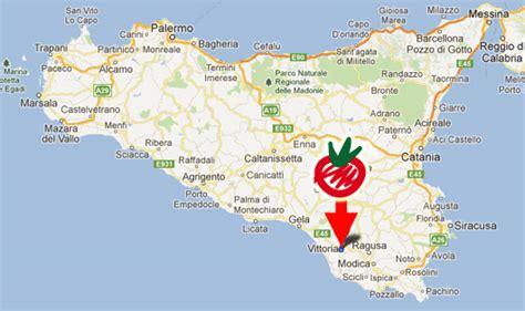 lade per coltivazione pomodoro kamarino kamarino sicilian tomato