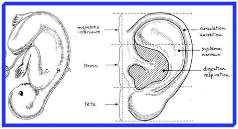 alerte votre corps vous parle n 176 4 les oreilles et les yeux le sanpaku