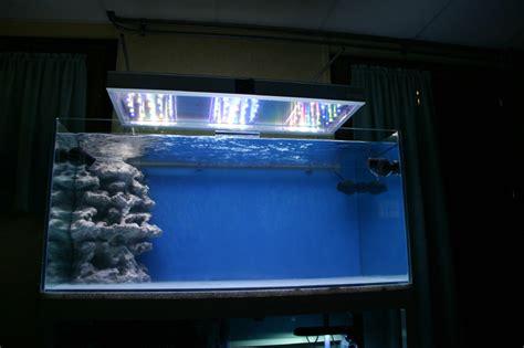 temps d eclairage aquarium temps d eclairage aquarium 28 images eclairage aux leds simple et pas cher partie 2