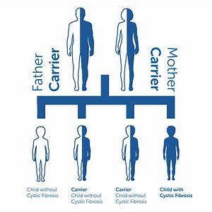 Cystic Fibrosis  About The Illness