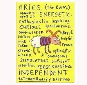 aries negative characteristics virgo negative traits fridge magnet gift