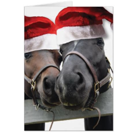 horse christmas gifts t shirts art posters other