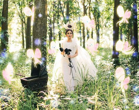 debut themes fairy tale