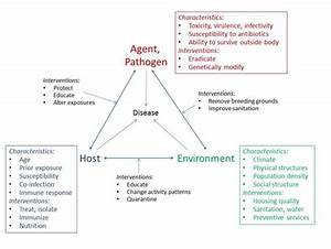 Triad Of Disease  Host  Agent  Environment