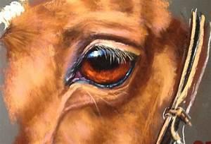 how to paint a 39 s eye in pastel arttutor