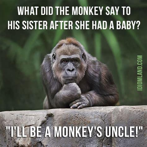 monkey    sister     baby