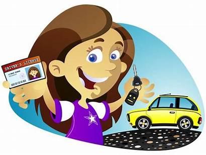 Driving Learn Learners Beginners