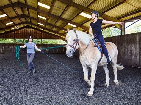 riding horse lunge schools lessons beech lesson training horseback beginners forward balance