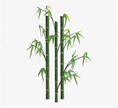 Bamboo Transparent Background Tree Clipart Vector Toppng