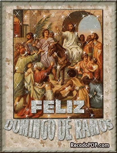 Ramos Domingo Imagens Mensagens Sal Luz Terra