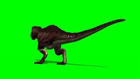 T-rex Dinosaur Walk By Animation Green Screen Video