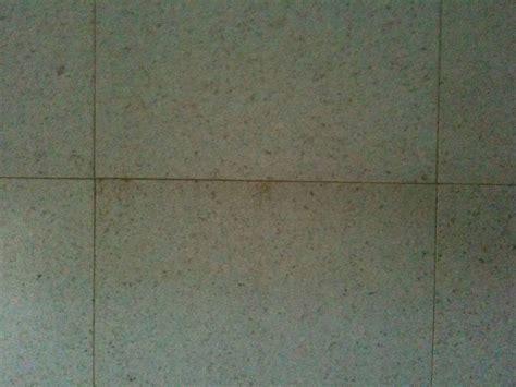 Best Laminate Flooring Consumer Reports Australia by Top 28 Cork Flooring Consumer Reports Best Flooring