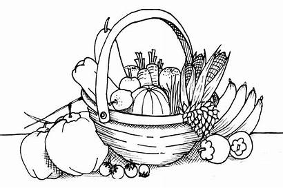 Coloring Vegetable Pages Fruit Printable Gardens