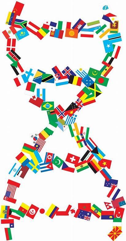 Dna Helix Clipart Graphic Transparent International Background