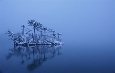 nature landscape winter island trees mist lake snow