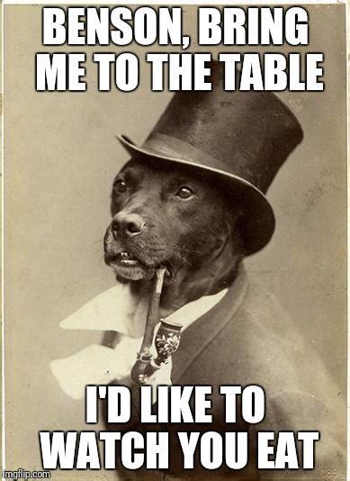 Benson Dog Meme - old money dog latest memes imgflip