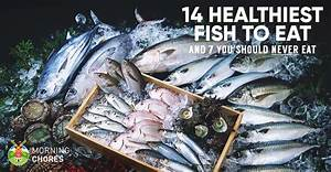 14 Healthiest & Best Fish to Eat (and 7 to Absolutely