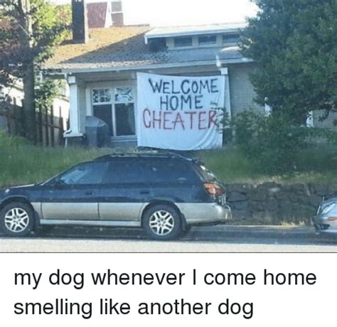Welcome Home Meme - welcome home cheat my dog whenever i come home smelling like another dog cheating meme on sizzle