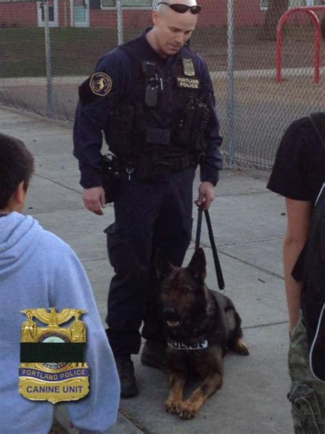 Cop Wounded, K9 Killed In Shootout  Ny Daily News