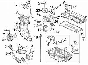 Ford Transit Connect Chain  Pump  Oil  Engine  Assembly