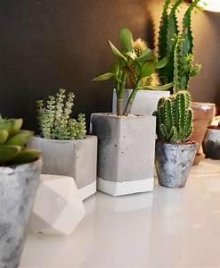 Pot Pour Plante Intérieur : pot pour plante d interieur ~ Melissatoandfro.com Idées de Décoration