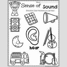 5 Senses  Planning Playtime