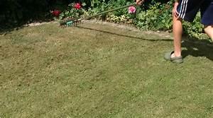 Tondre La Pelouse Sans Ramasser : meilleur scarificateur 2019 bien choisir son a rateur de gazon maisonae ~ Melissatoandfro.com Idées de Décoration