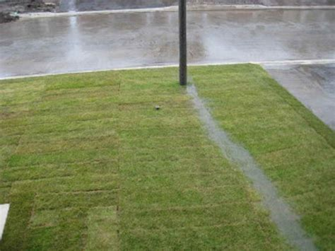 landscape drainage how to repairs landscaping swale drainage outdoor drainage systems vegetated swale yard