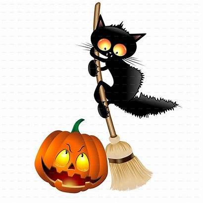 Cartoon Cat Halloween Pumpkin Funny Mouse Scared
