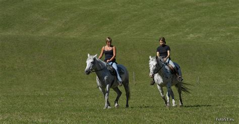 andare  cavallo  trekking  cavallo  val pusteria