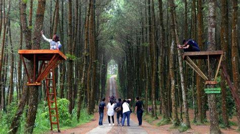 harga tiket masuk  lokasi hutan pinus kragilan spot